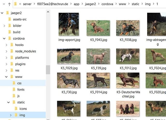 Image Folder in www