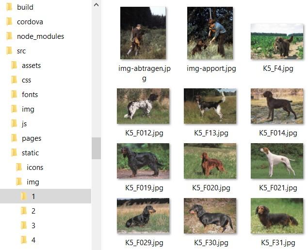 Image Folder in src /Static/img/